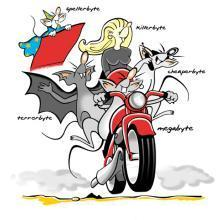 Byte family on a motor bike - click to  read the article animal brands in the SSD market